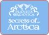 PLANETA ORGANIKA Арктика