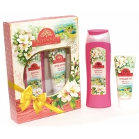 48 Provance WILD ROSE шампунь250ml крем для рук 75ml женский парфюмерный набор