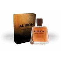 Albion AMBRE ORIENT edt, 100ml Delta parfum, мужская туалетная вода