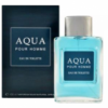 Aqua (Аква) edt, 100ml Neo мужсская туалетная вода Alain Fumer